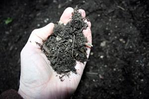 Fine grade organic compost