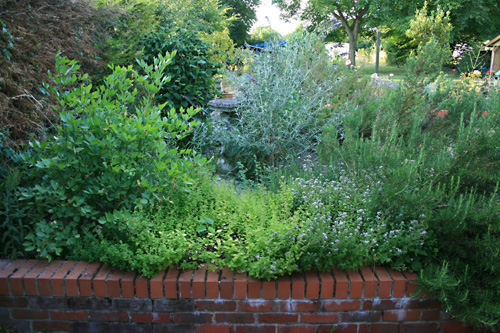 Learn How To Create A Wildlife Friendly Garden With The Rural Gardener