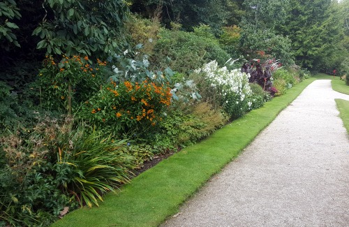 Planning A New Herbaceous Border
