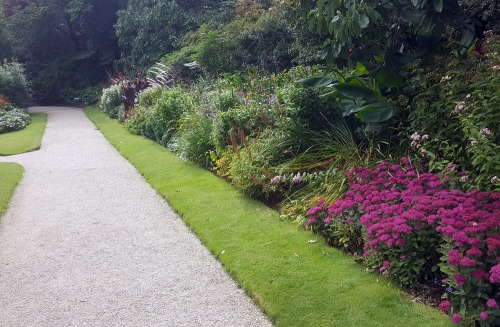 Planning our new herbaceous border